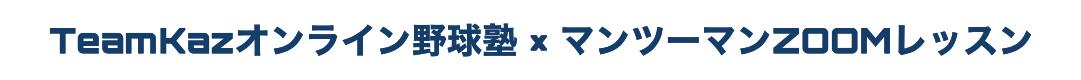 マンツーマン式ZOOMレッスン野球塾:少年野球〜プロレベルまで対応
